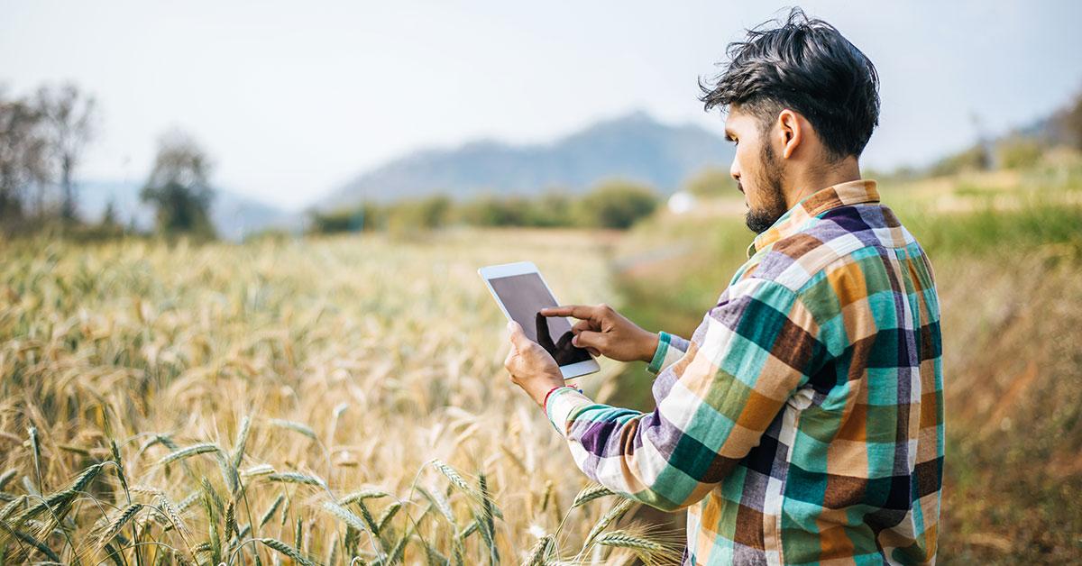 Nasce RurAll, l'agricoltura 4.0 che abbatte la contraffazione