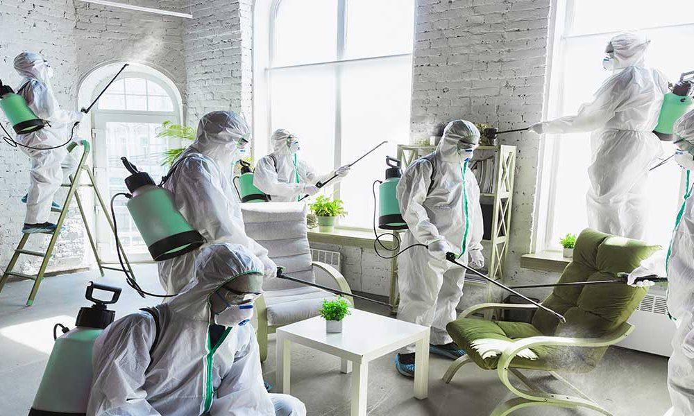 sanitizing steam disinfectant celmi healthyx