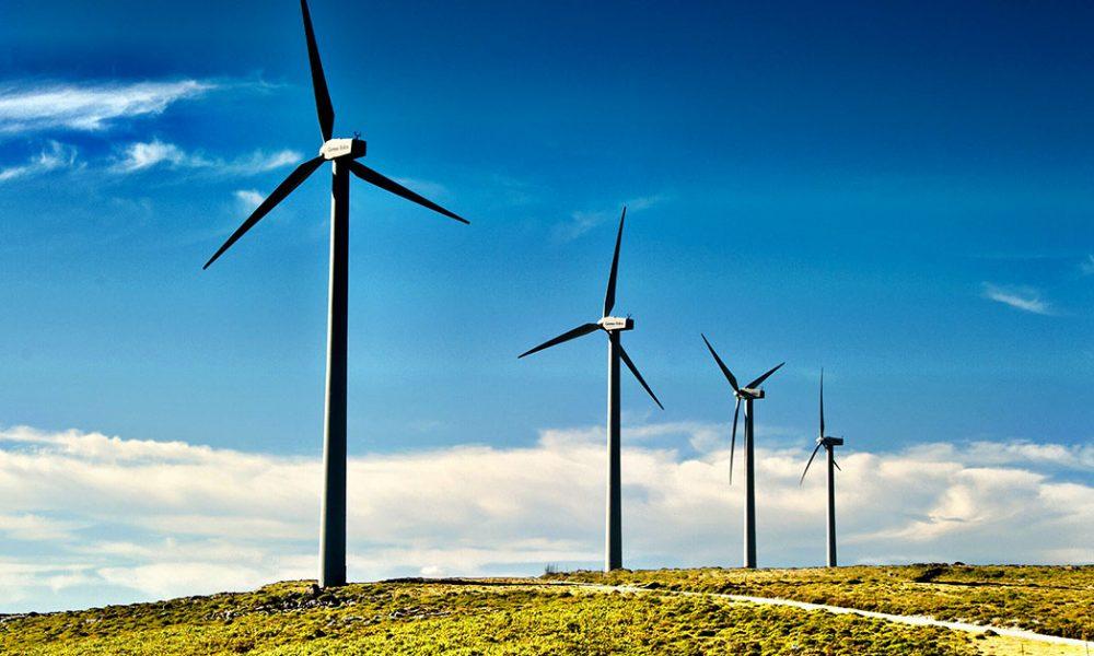 Il vento riempie le vele dell'economia mentre aiuta il pianeta